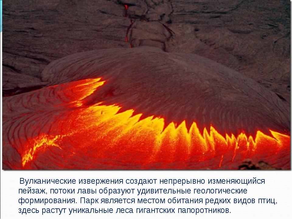 Вулканические извержения создают непрерывно изменяющийся пейзаж, потоки лавы...