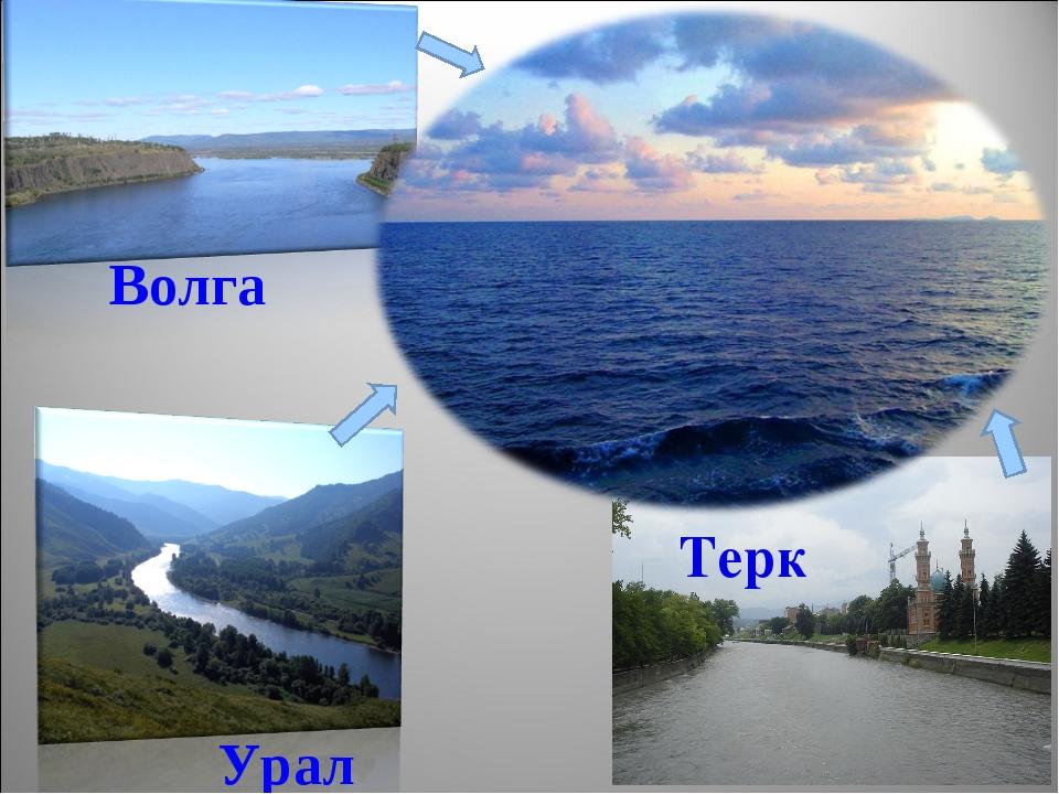 Терк Волга Урал