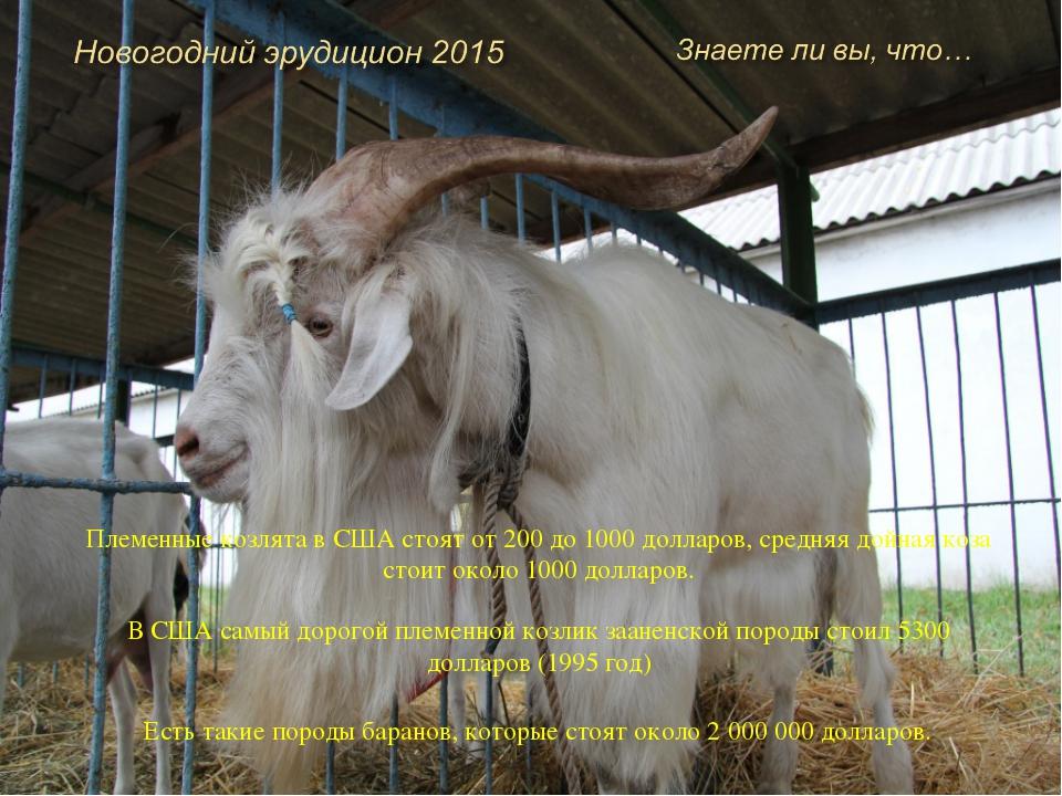 Козье молоко выводит из организма радионуклиды. Козьим молоком успешно лечат...