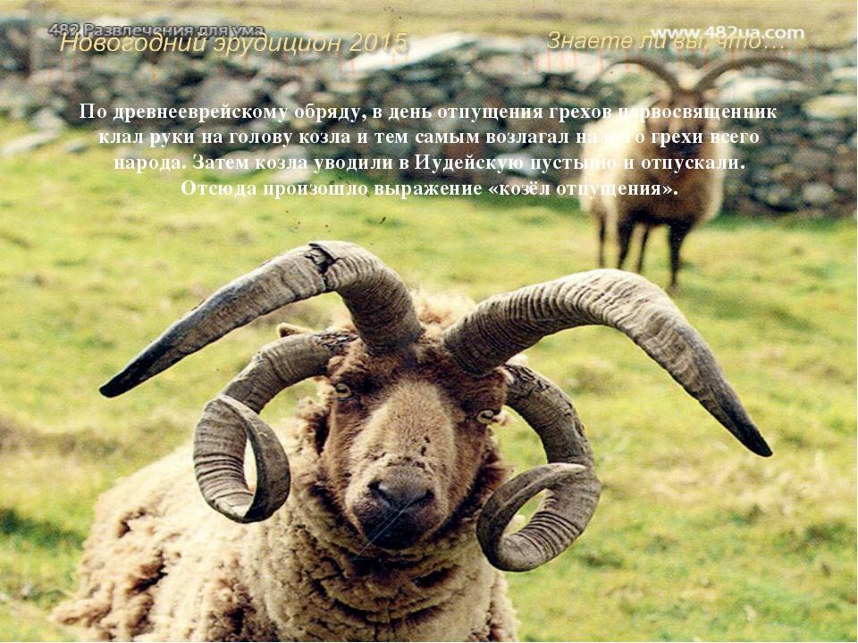 В средневековой французской комедии богатый суконщик подаёт в суд на пастуха,...