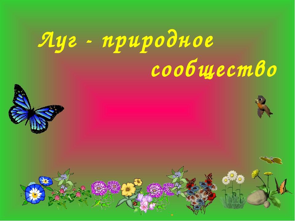 . Луг - природное сообщество