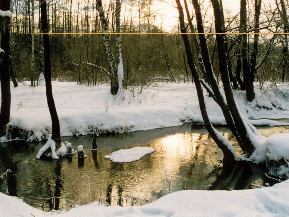 Яблоками, картинки на тему конец зимы