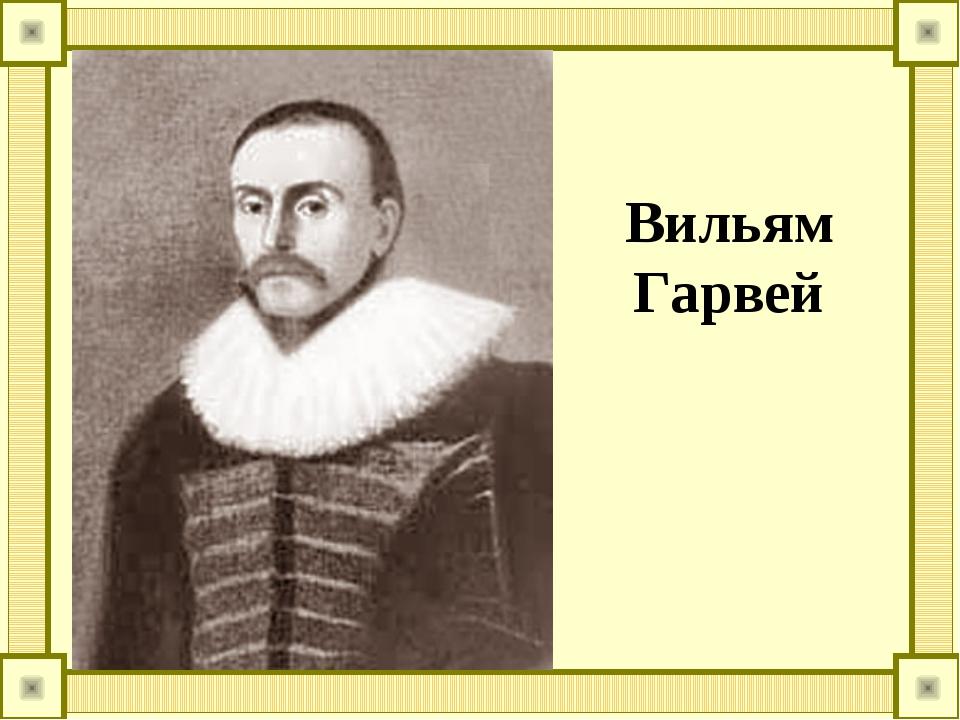 Вильям Гарвей