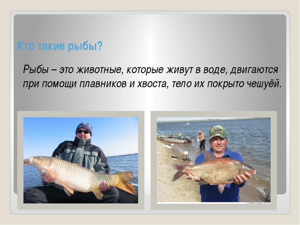 Кто такие рыбы? Рыбы – это животные, которые живут в воде, двигаются при пом...