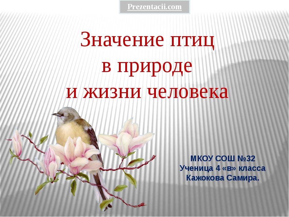 Значение птиц в природе и жизни человека МКОУ СОШ №32 Ученица 4 «в» класса Ка...