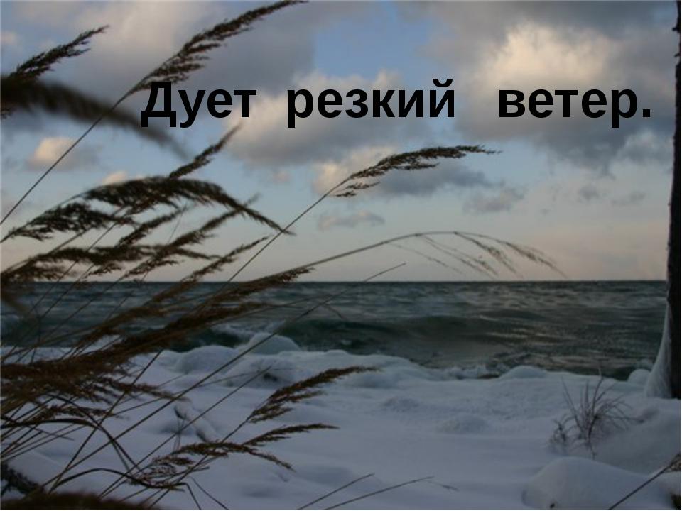 Дует резкий ветер.