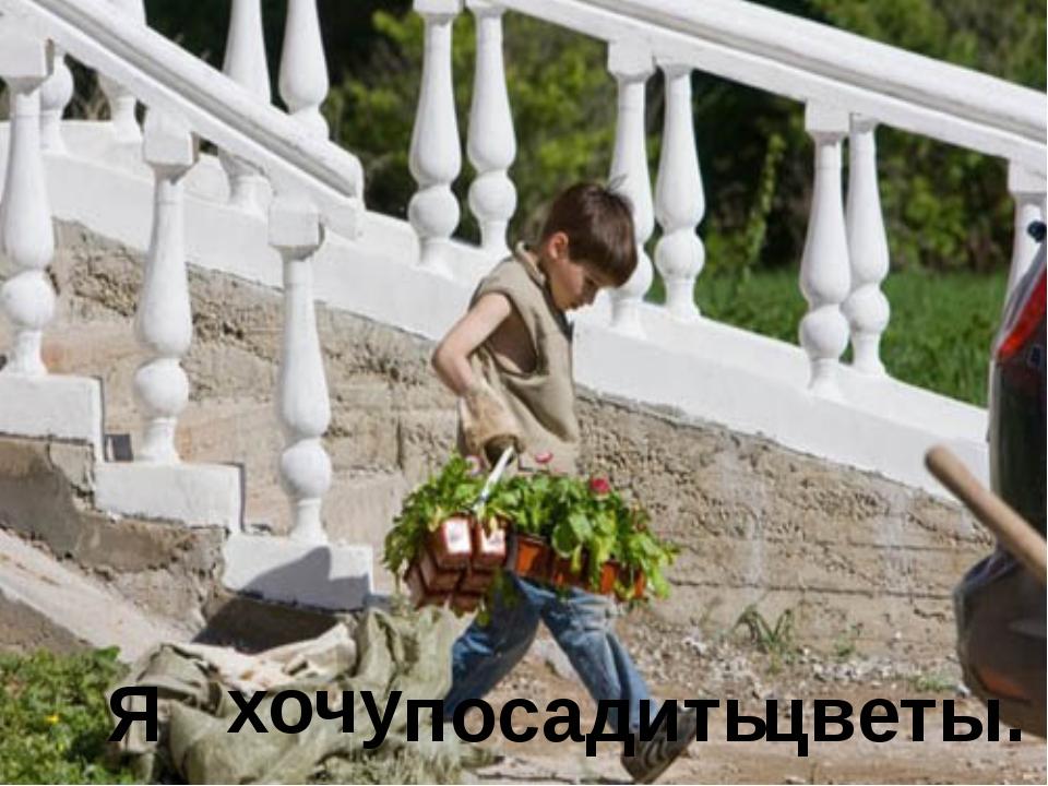 Я хочу посадить цветы.