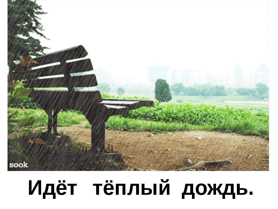 Идёт тёплый дождь.