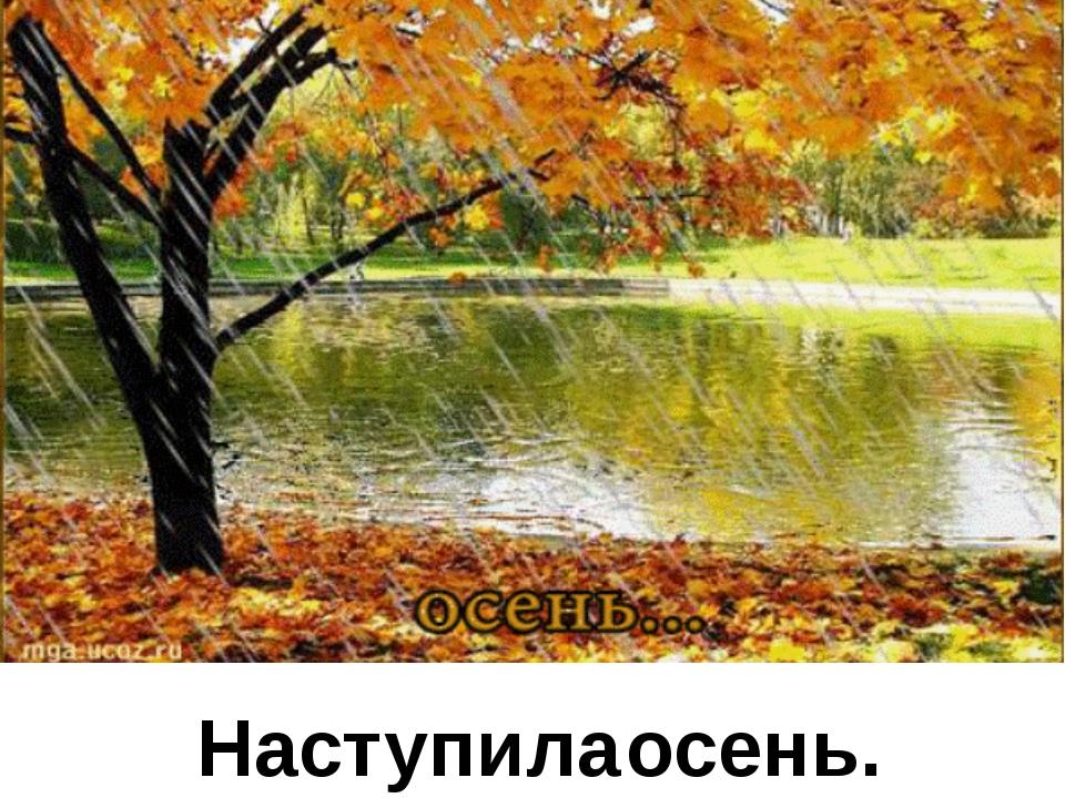 Наступила осень.