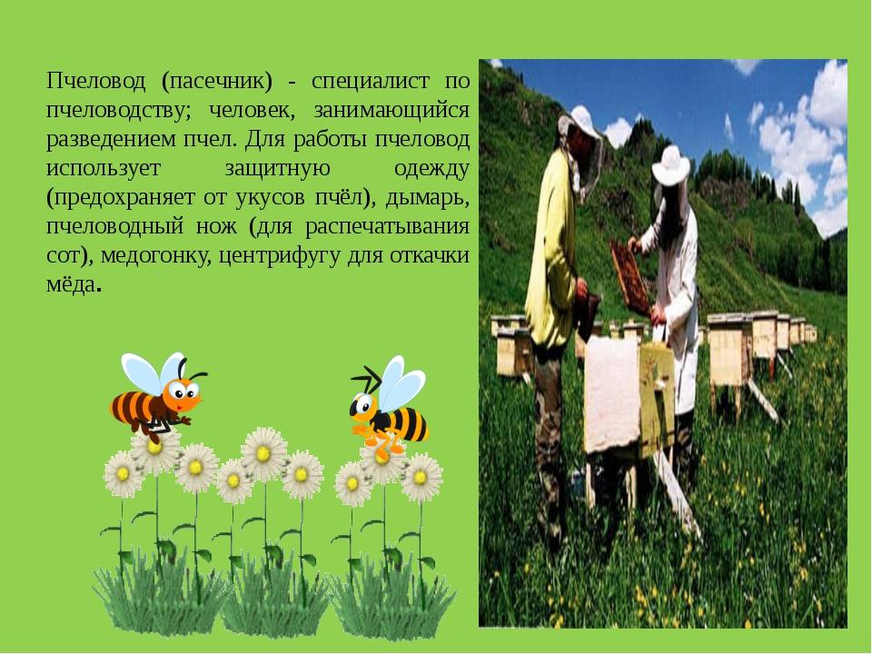 Пчеловод (пасечник) - специалист по пчеловодству; человек, занимающийся разве...