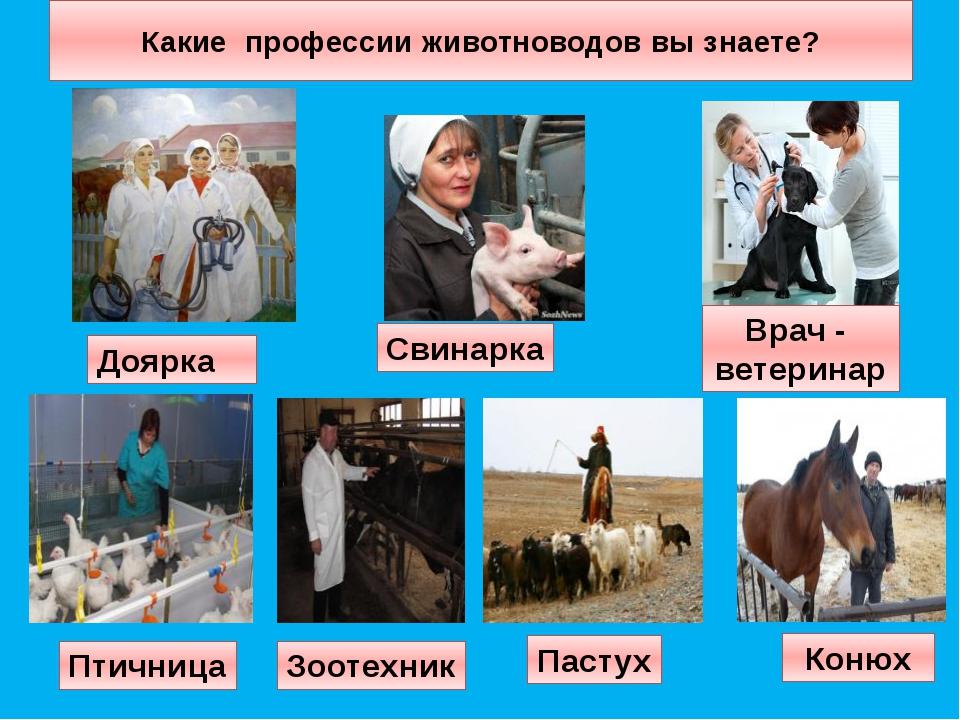 они также картинки о профессии животновода самое случилось греческой