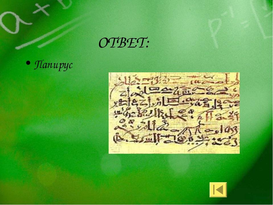 ОТВЕТ: Папирус