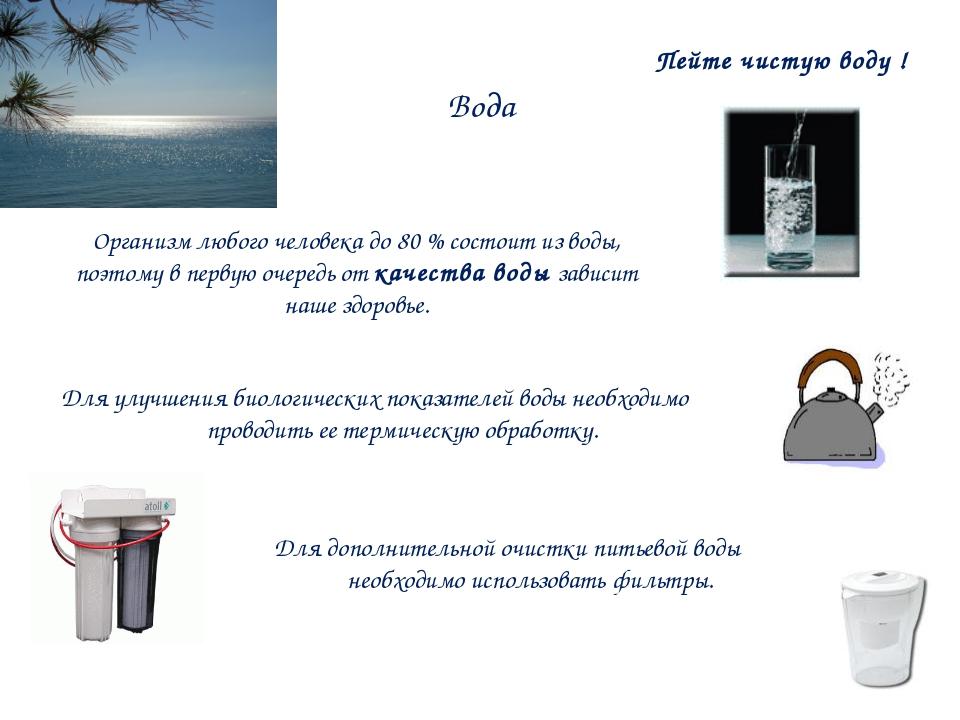 Вода Организм любого человека до 80 % состоит из воды, поэтому в первую очере...