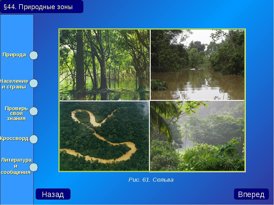 §44. Природные зоны Назад Вперед Рис. 61. Сельва Природа Население и страны...