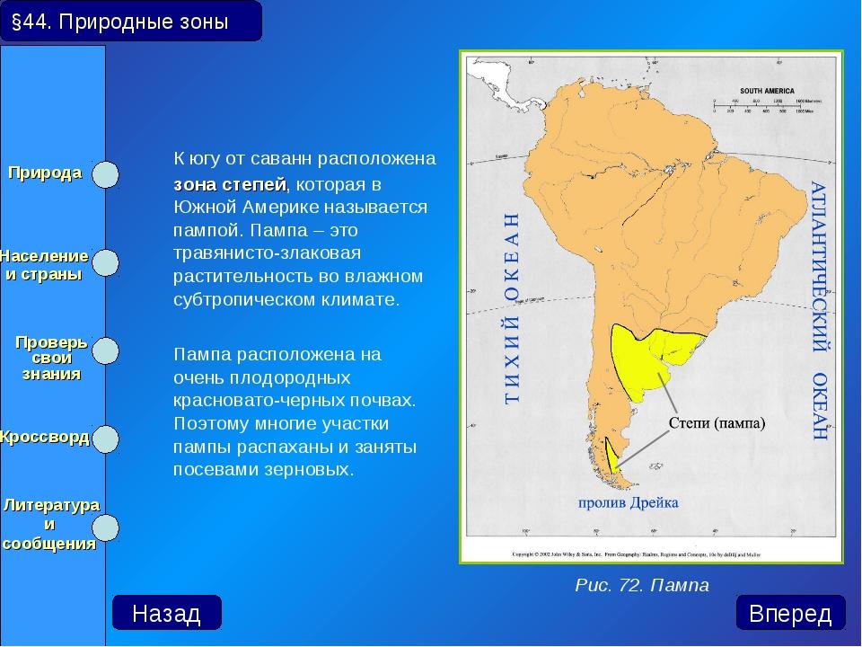 К югу от саванн расположена зона степей, которая в Южной Америке называется...