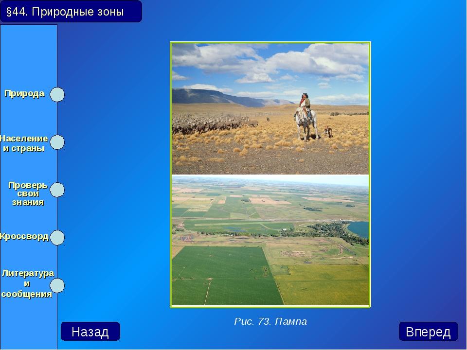 §44. Природные зоны Назад Вперед Рис. 73. Пампа Природа Население и страны...