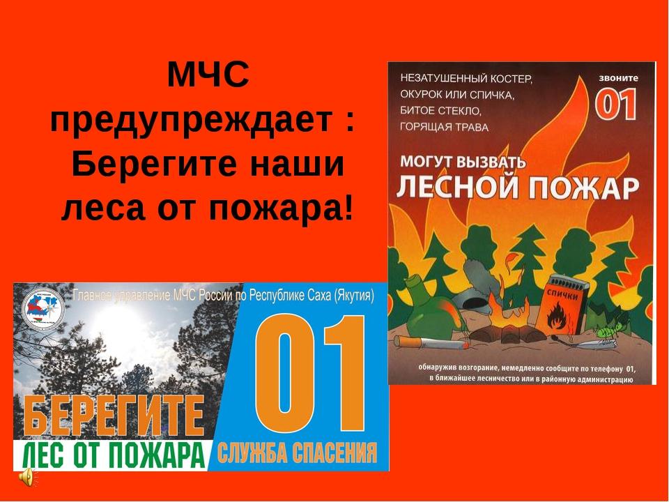 МЧС предупреждает : Берегите наши леса от пожара!