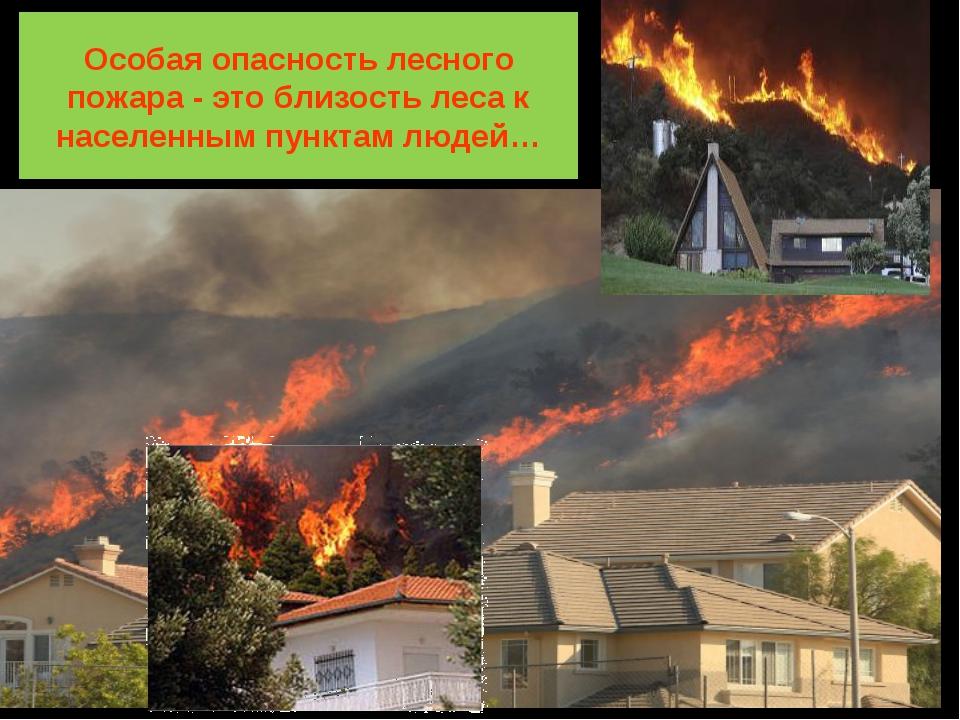 Особая опасность лесного пожара - это близость леса к населенным пунктам людей…