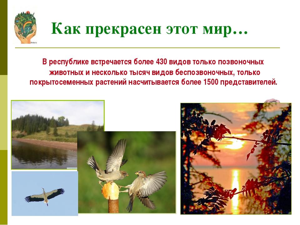 В республике встречается более 430 видов только позвоночных животных и неско...