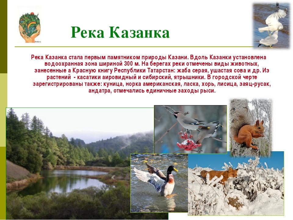 Река Казанка стала первым памятником природы Казани. Вдоль Казанки установле...
