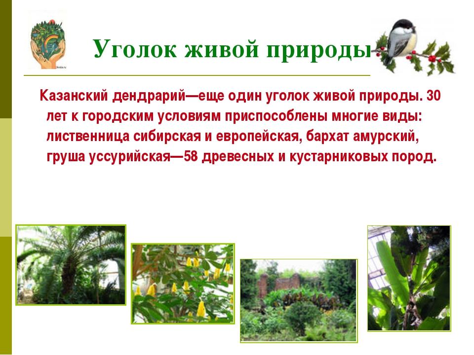 Казанский дендрарий—еще один уголок живой природы. 30 лет к городским услови...