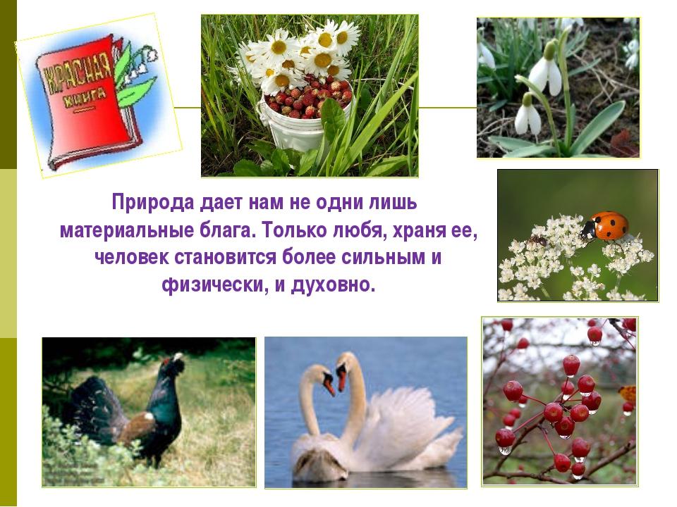 Природа дает нам не одни лишь материальные блага. Только любя, храня ее, чел...