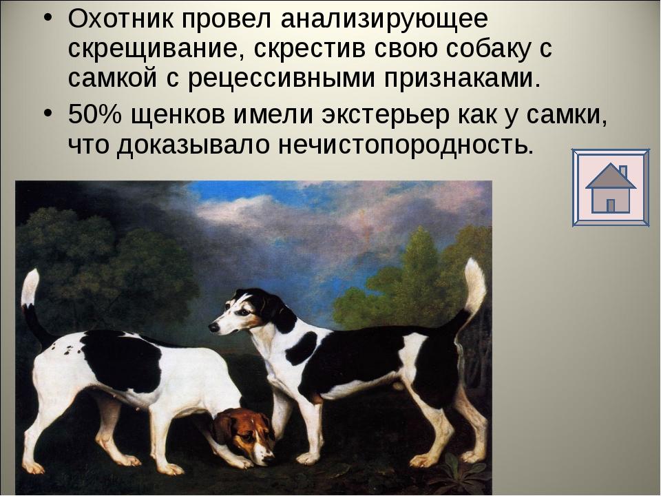 Охотник провел анализирующее скрещивание, скрестив свою собаку с самкой с рец...