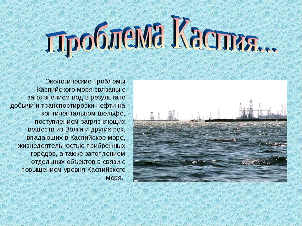 Экологические проблемы Каспийского моря связаны с загрязнением вод в результ...