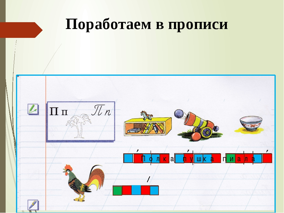 Поработаем в прописи П о л к а п у ш к а п и а л а