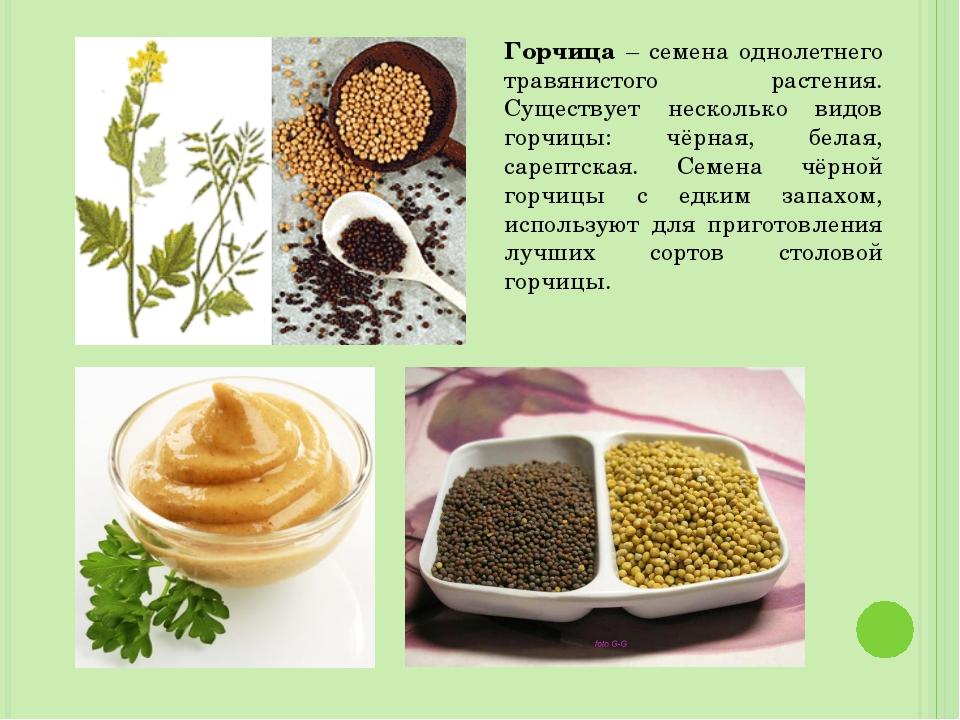 Горчица – семена однолетнего травянистого растения. Существует несколько видо...