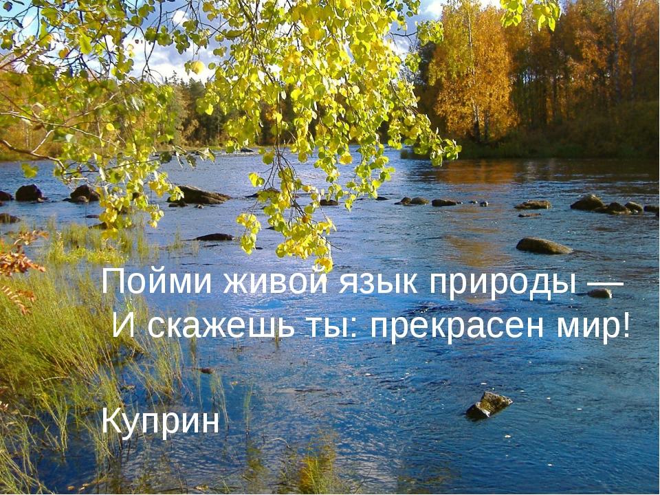 Пойми живой язык природы — И скажешь ты: прекрасен мир! Куприн