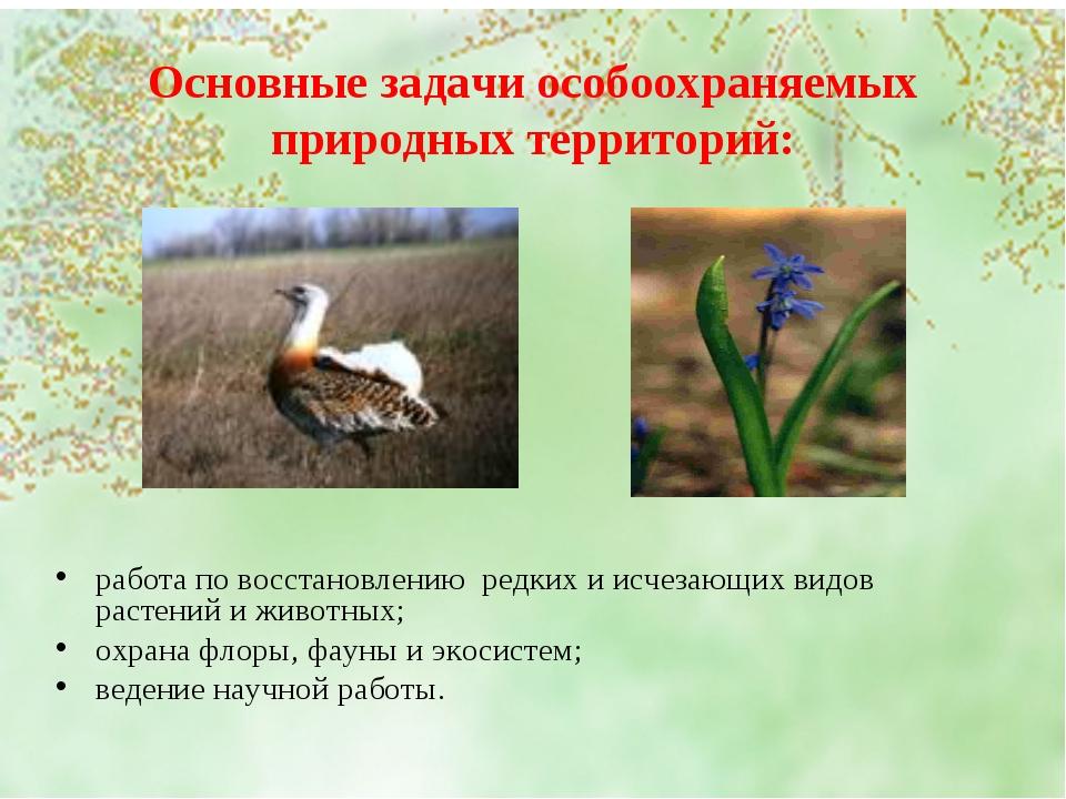 Основные задачи особоохраняемых природных территорий: работа по восстановлени...