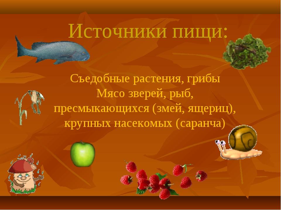 Источники пищи: Съедобные растения, грибы Мясо зверей, рыб, пресмыкающихся (з...