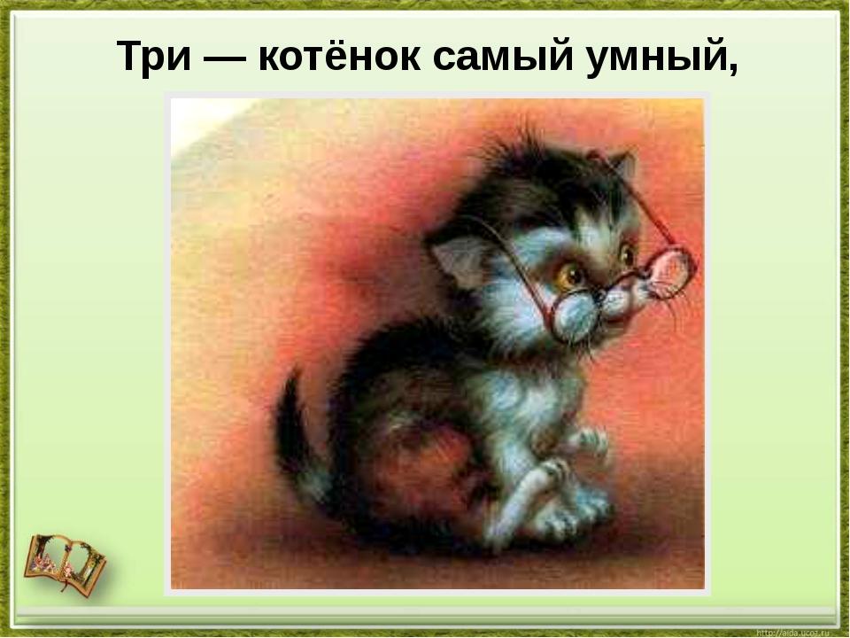 Три — котёнок самый умный,