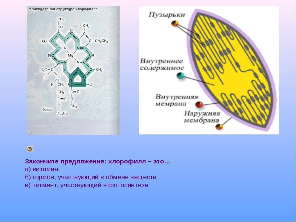 Закончите предложение: хлорофилл – это… а) витамин. б) гормон, участвующий в...