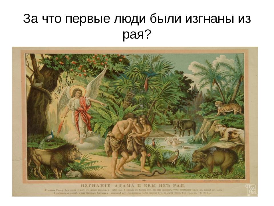 За что первые люди были изгнаны из рая?