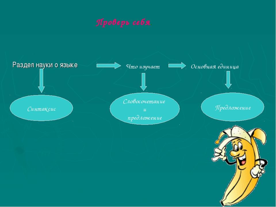 Раздел науки о языке Что изучает Основная единица Словосочетание и предложен...