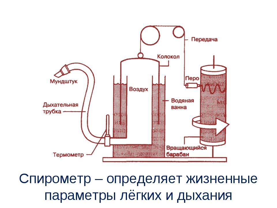 Спирометр – определяет жизненные параметры лёгких и дыхания