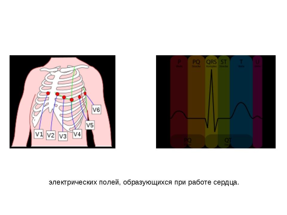 Электрокардиогра́фия — методика регистрации и исследования электрических поле...