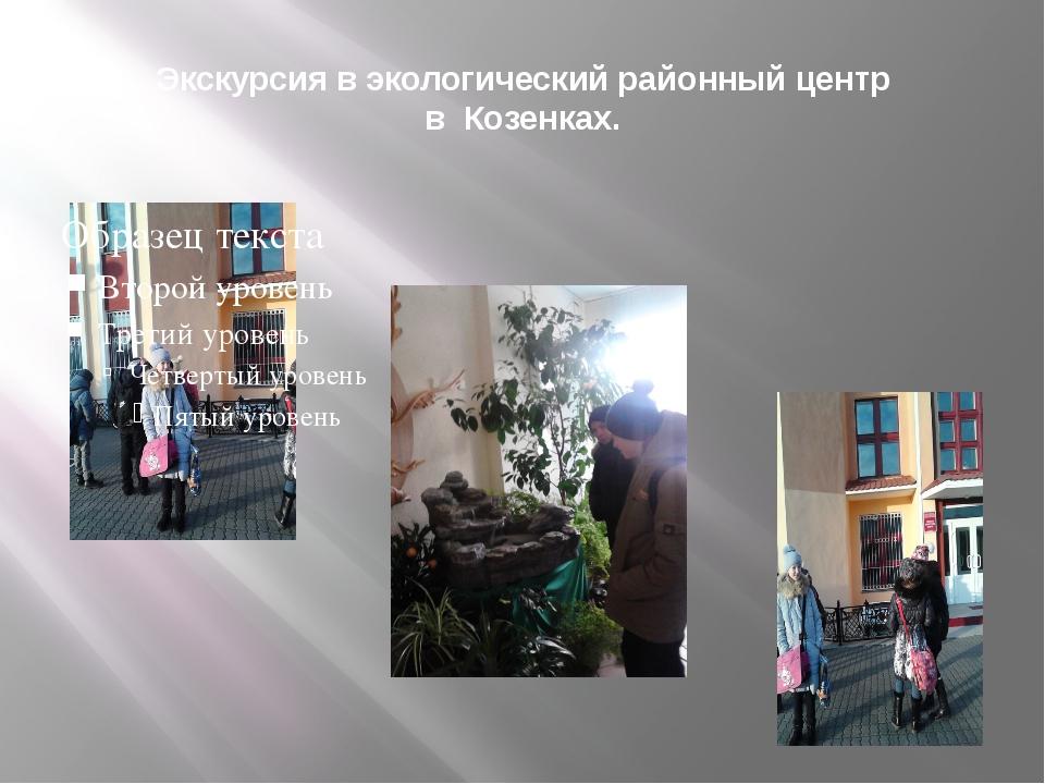 Экскурсия в экологический районный центр в Козенках.
