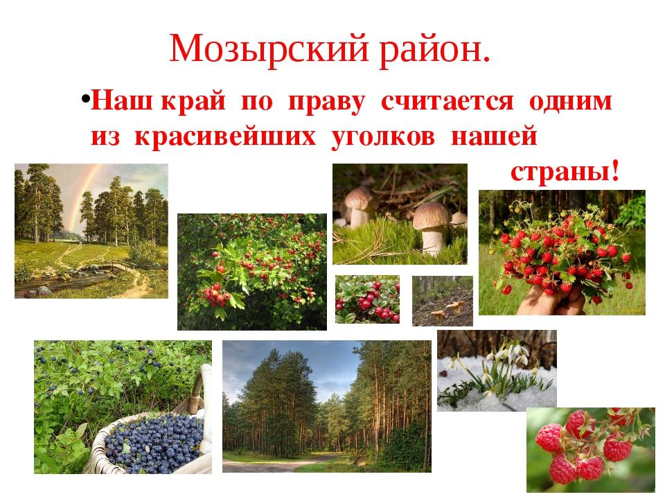Мозырский район. Наш край по праву считается одним из красивейших уголков наш...