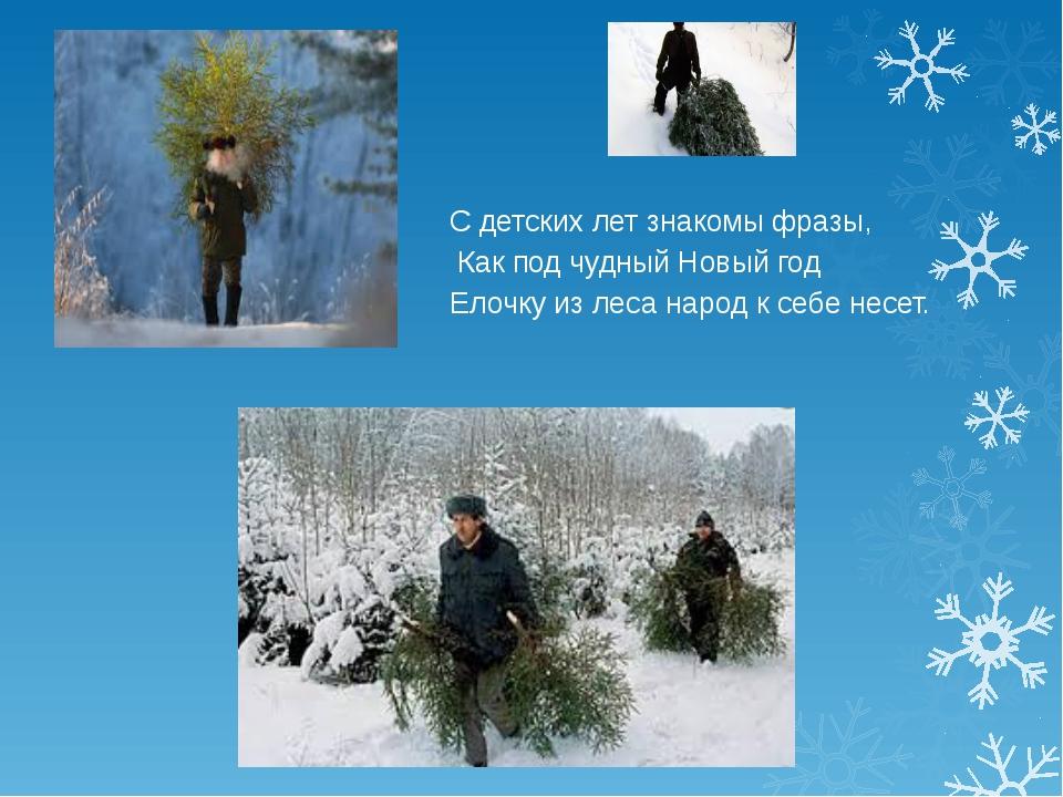 С детских лет знакомы фразы, Как под чудный Новый год Елочку из леса народ к...