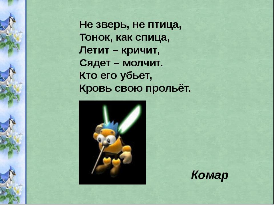 Не зверь, не птица, Тонок, как спица, Летит – кричит, Сядет – молчит. Кто его...
