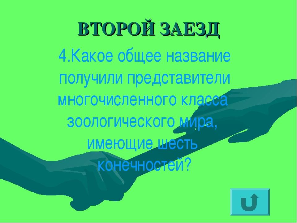 ВТОРОЙ ЗАЕЗД 4.Какое общее название получили представители многочисленного кл...