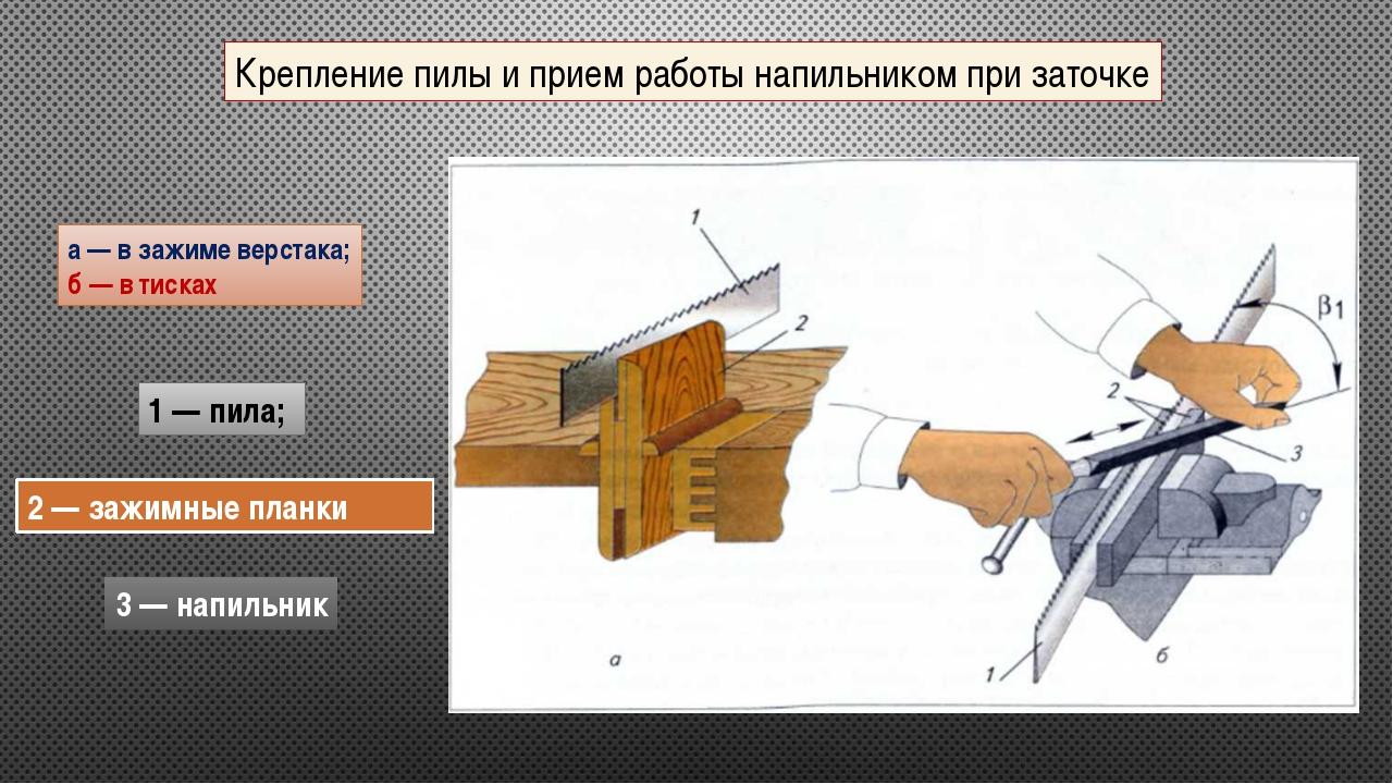 Крепление пилы и прием работы напильником при заточке а — в зажиме верстака;...