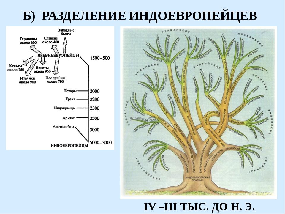 Б) РАЗДЕЛЕНИЕ ИНДОЕВРОПЕЙЦЕВ IV –III ТЫС. ДО Н. Э.