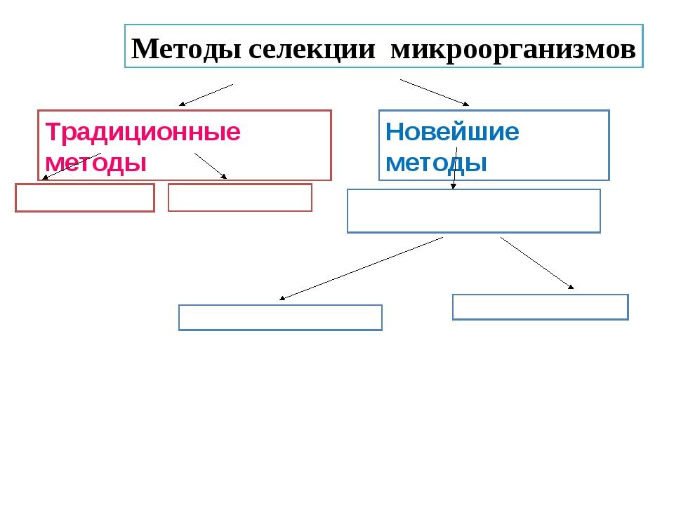 Методы селекции микроорганизмов Традиционные методы Новейшие методы