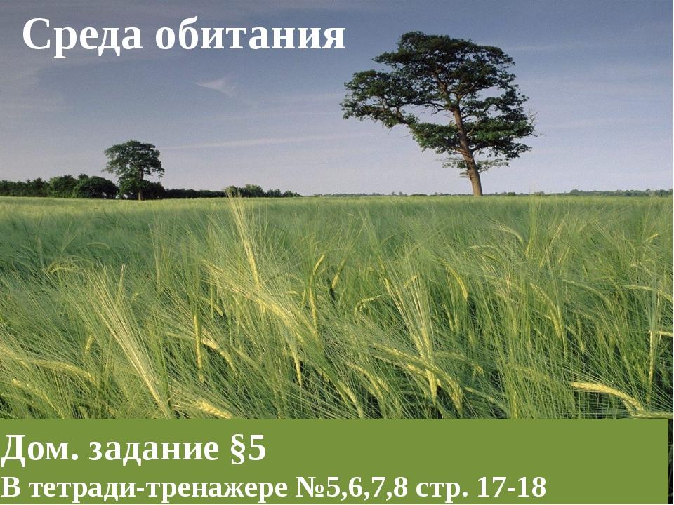 Среда обитания Дом. задание §5 В тетради-тренажере №5,6,7,8 стр. 17-18