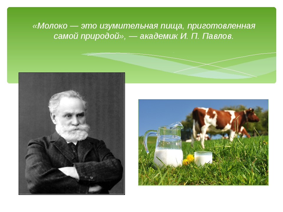 «Молоко — это изумительная пища, приготовленная самой природой», — академик И...