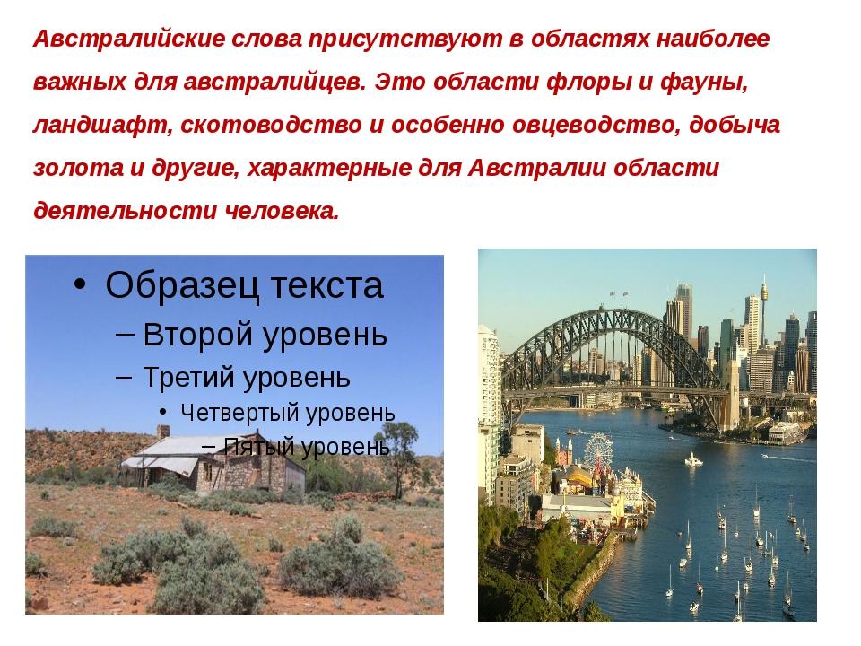 Австралийские слова присутствуют в областях наиболее важных для австралийцев....